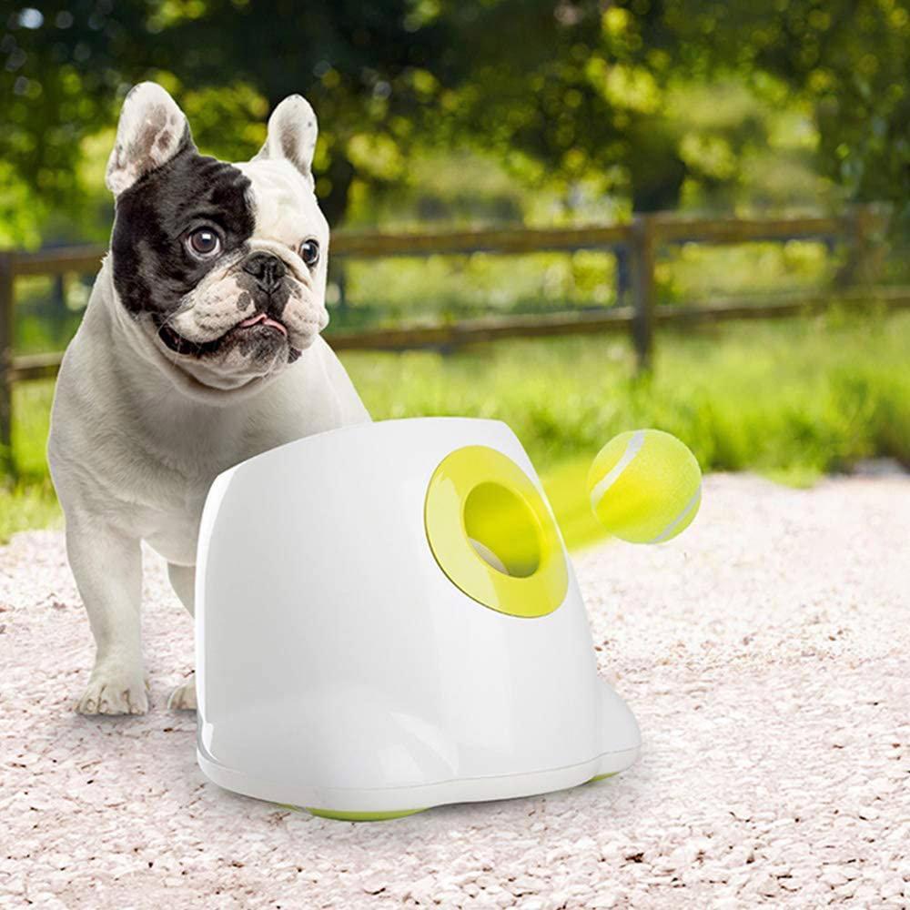 pet throwing toy