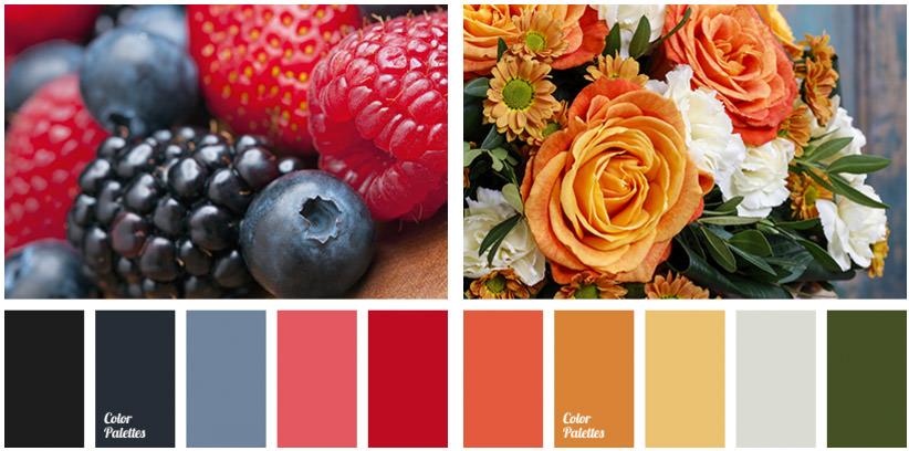 color palettes home page