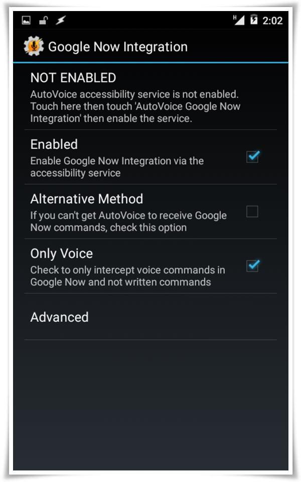 autovoice integration