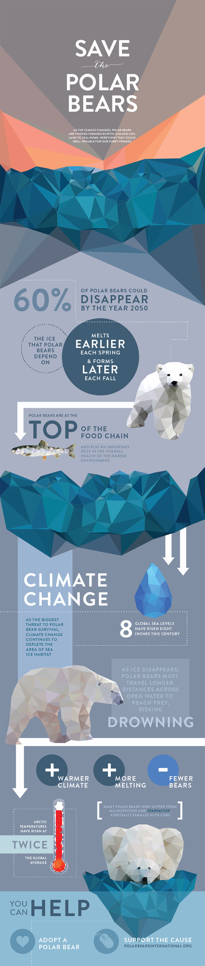 save-the-animals-infographic-series
