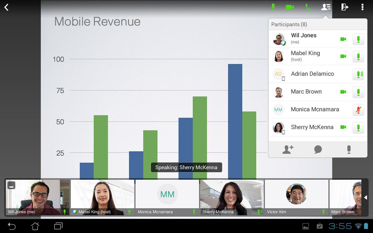 Cisco WebEx's webinar screen