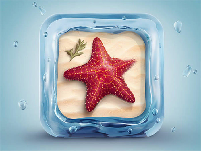 starfish-icon