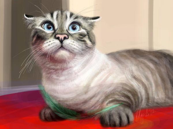 olechka kitty
