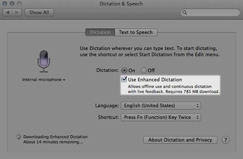 Offline Dictation