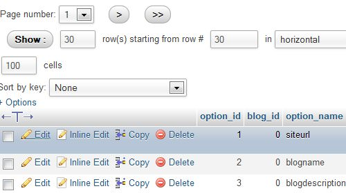 WordPress Admin Login 404 Issue - 10 Most Common WordPress Errors (+Solutions)