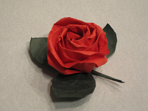 Rose and leaf folded