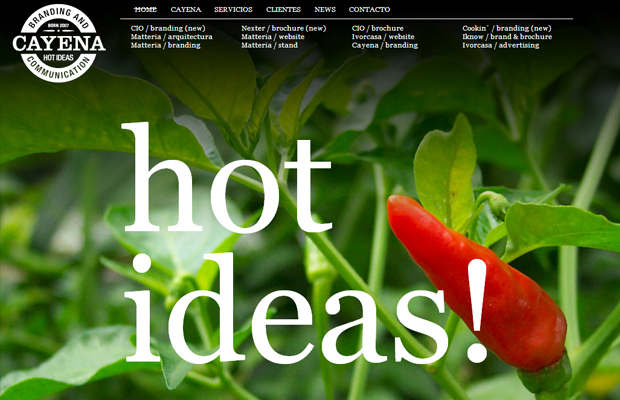 hot chili peppers website layout photography