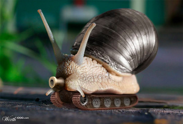 battle snail