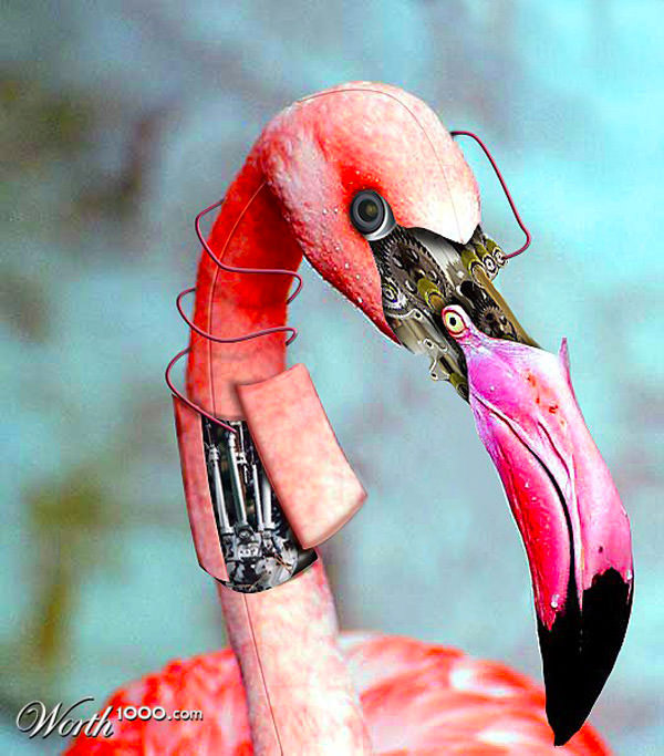 flamingrobot