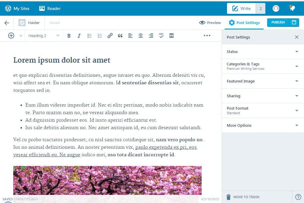 предварительный просмотр проекта WordPress