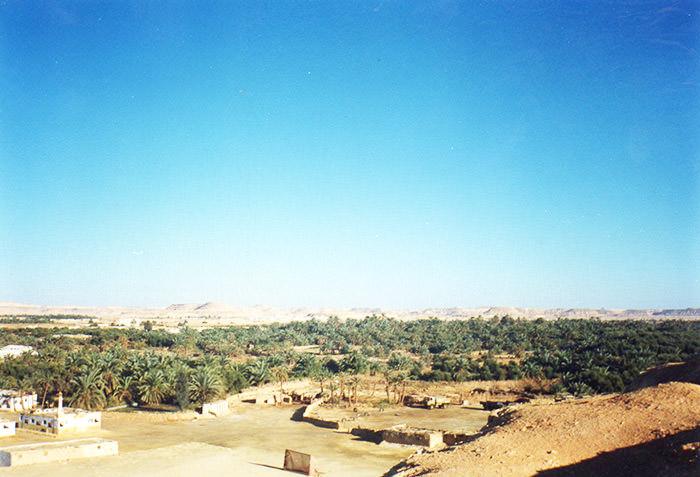 siwa-oasis