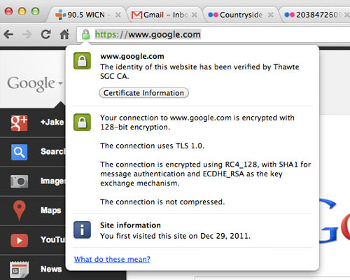 Google Chrome HTTPS Padlock icon for Google homepage