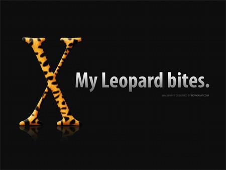 leopard wall