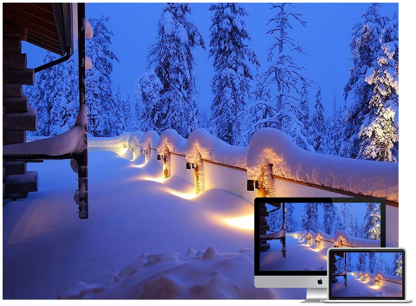 Snow Lights