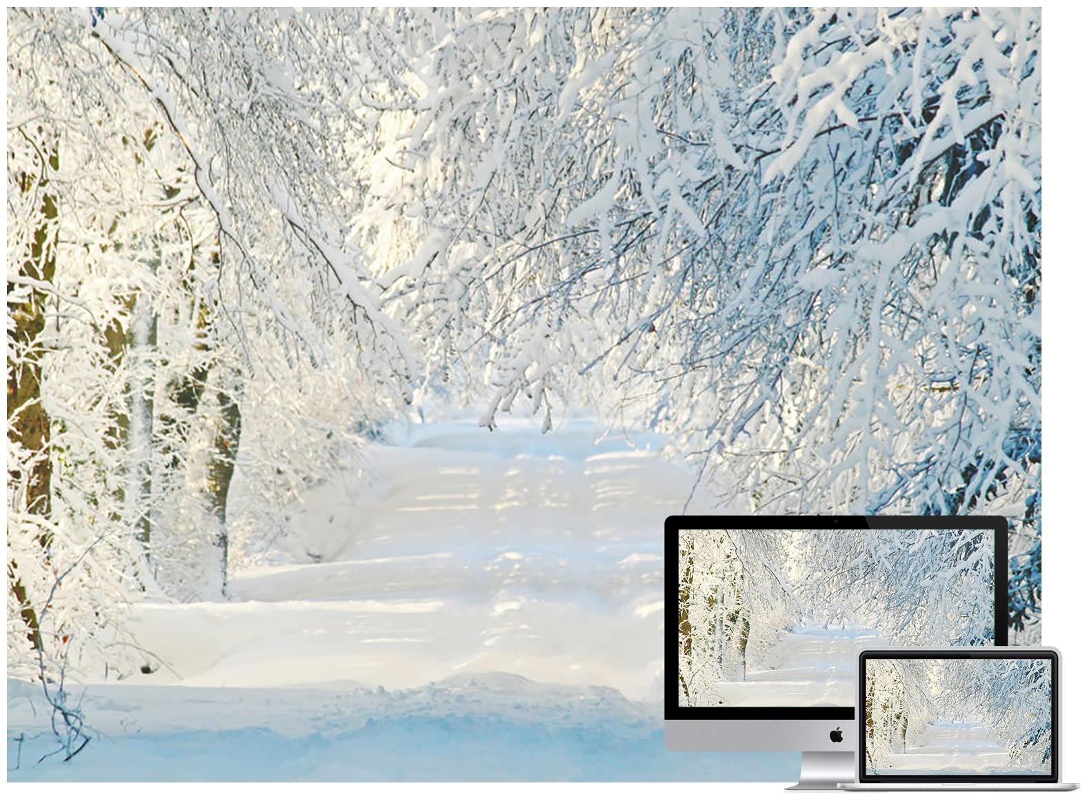 Snowy Road Winter