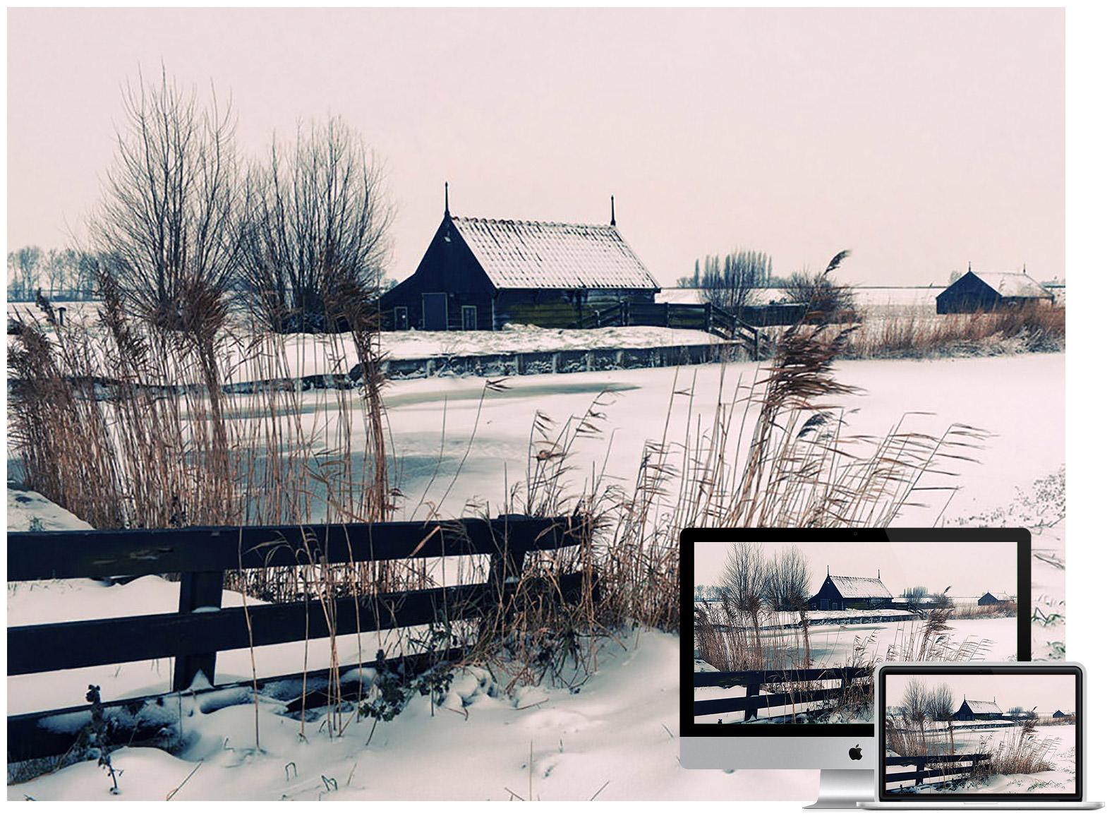 Windmills on a Winter Farm