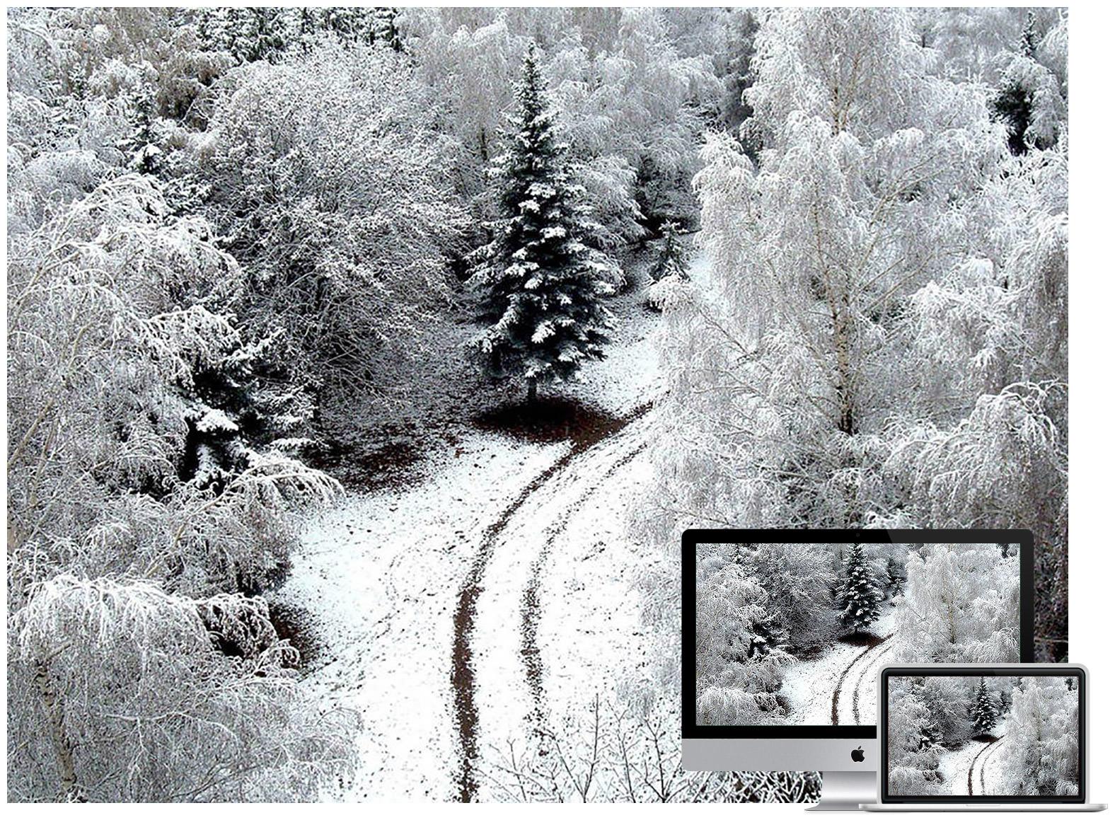 Winter Raod Aerial Shot