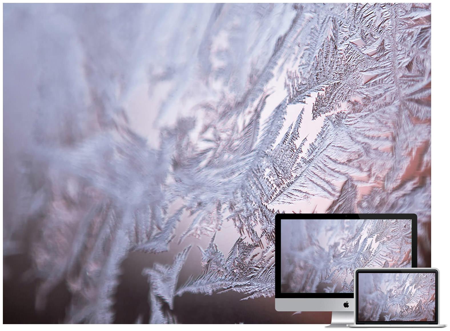 Winter Wallpaper