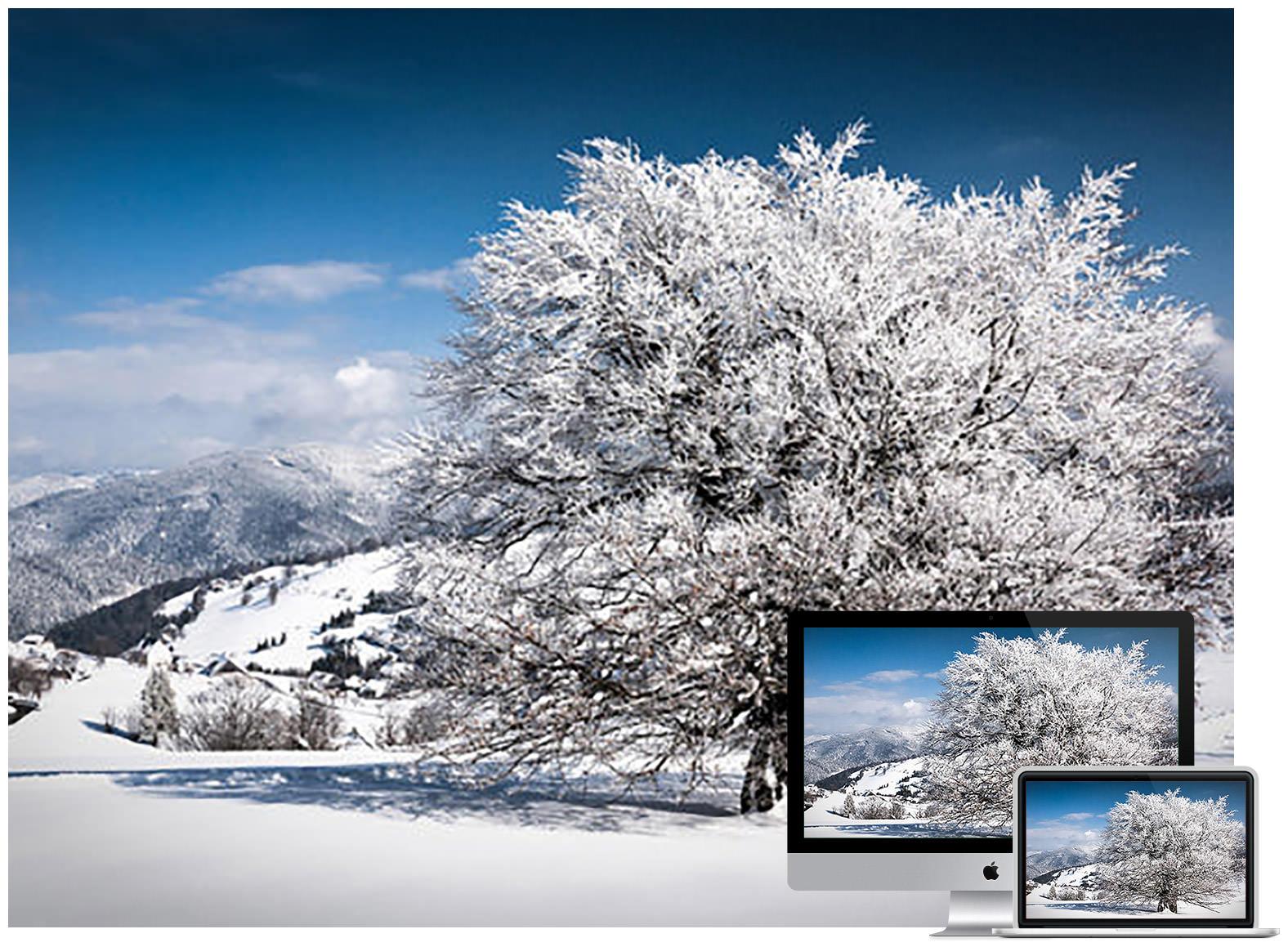 winter day - Bộ ảnh nền mùa Đông đẹp dành cho máy tính
