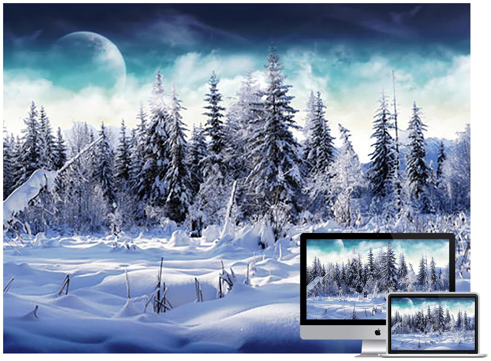 winter wonderland 2 - Bộ ảnh nền mùa Đông đẹp dành cho máy tính