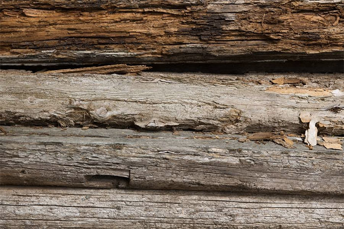 Old Rotten Plank Texture