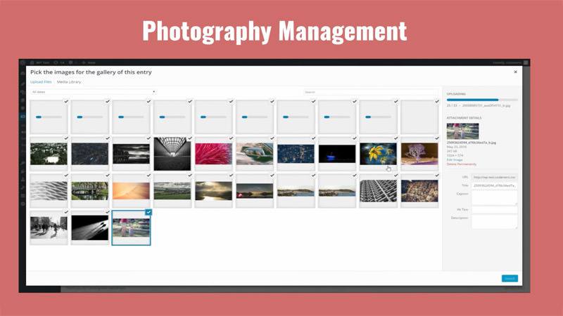 photography-management