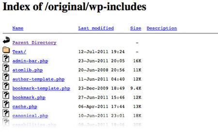 protect directory | افزایش امنیت وردپرس | کدفرند