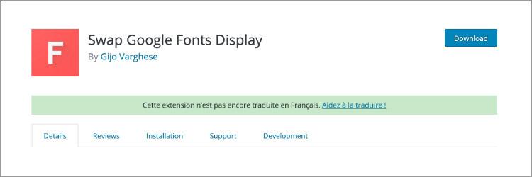 Swap Google Font Display
