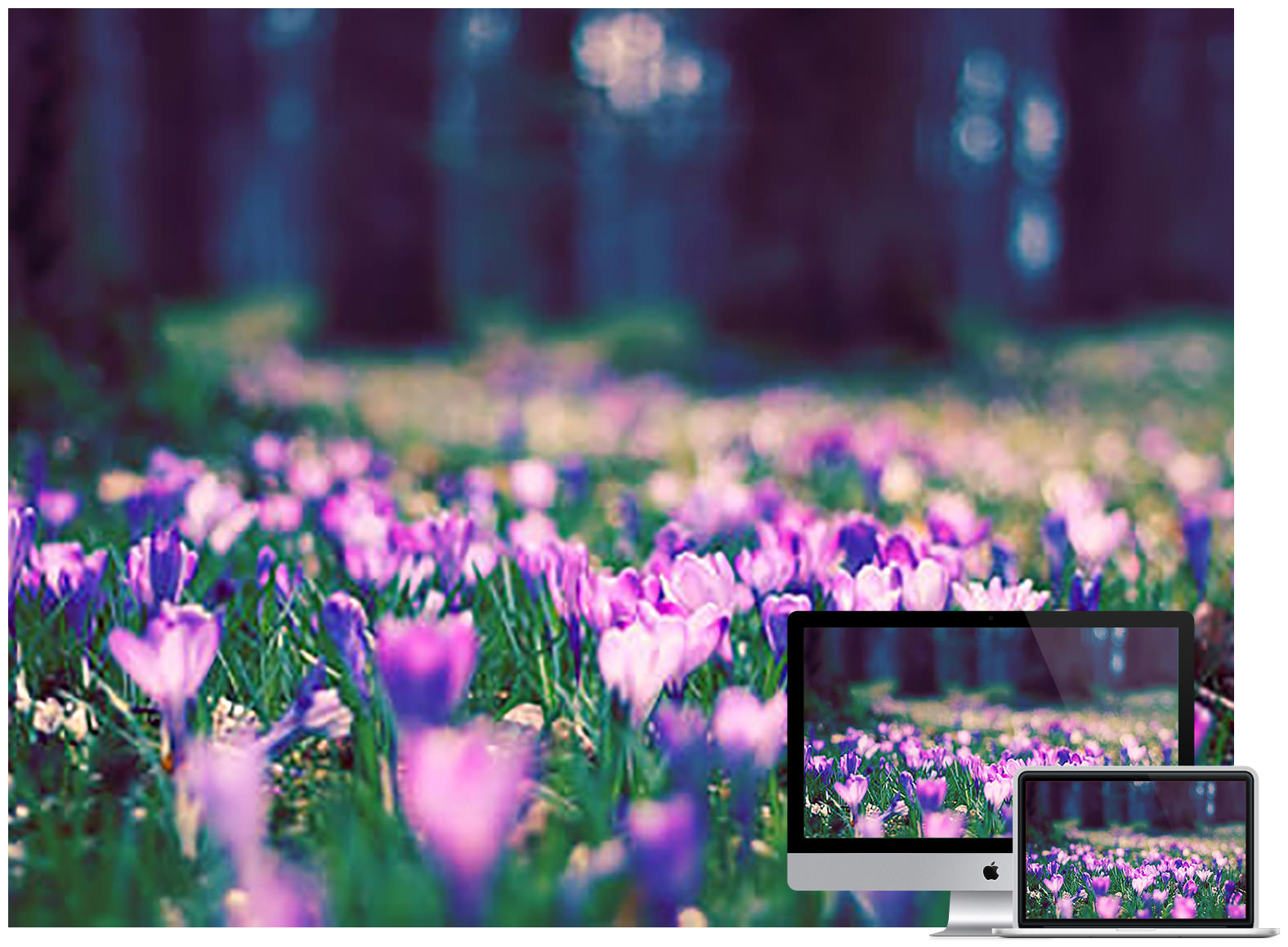 Fortaste of Spring wallpaper